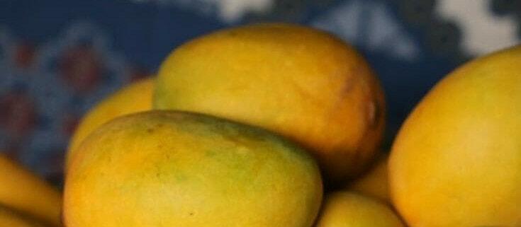 Homemade Pickled Mangoes
