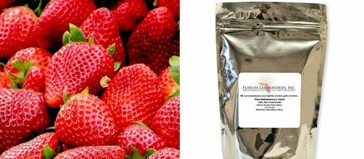 Strawberry Deodorant Diatomaceous earth